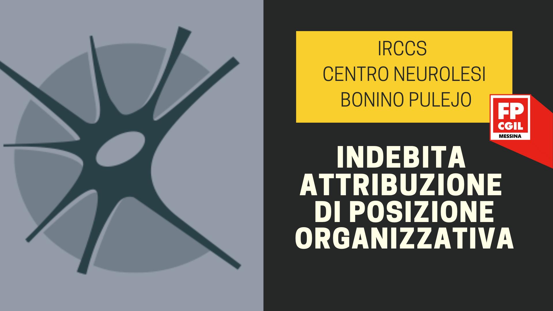IRCCS Centro Neurolesi Bonino Pulejo –  Indebita attribuzione di Posizione Organizzativa