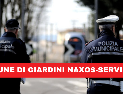 Polizia Municipale. Organizzazione servizi di vigilanza.
