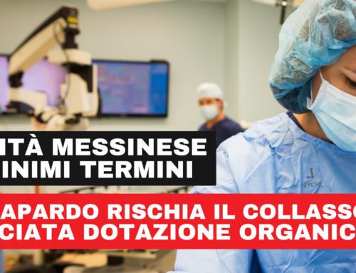 Pianta Organica e Piano Triennale del Fabbisogno A.O. Papardo.