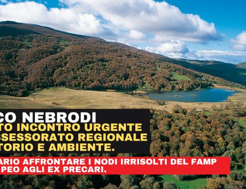 Parco dei Nebrodi, i sindacati chiedono un incontro urgente all'Assessore Regionale Territorio e Ambiente, per affrontare la questione della mancata assegnazioni ai dipendenti del FAMP